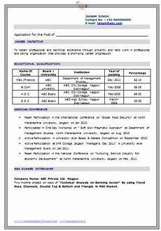 professional curriculum vitae resume template for all seekers exle of an excel