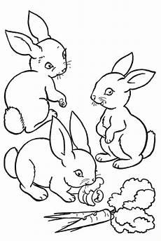 Ausmalbilder Tiere Ostern Pin Auf Print