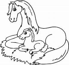 Ausmalbild Pferde Fohlen Animal Coloring Pages Children S Best Activities