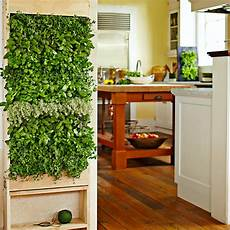 8 easy ways to create a vertical garden wall inside your home