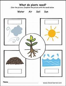 plants need water air soil and air kids food from the earth educaci 243 n de ni 241 os plantas