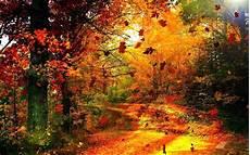 fond d écran attrape rêve fond decran automne hd idees de dcoration