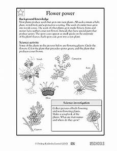 science plant worksheets grade 3 12496 3rd grade 4th grade science worksheets flower power flower power plant science flowers