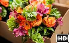 flower wallpaper hd new flowers wallpapers hd new tab flower themes hd