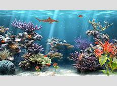 Coral Reef Aquarium Animated Wallpaper http://www