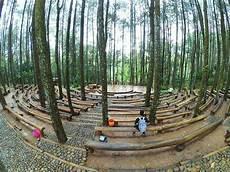 Gambar Trip Spot Selfie Instagram Bantul Hutan Pinus