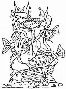 ausmalbilder fische gratis malvor