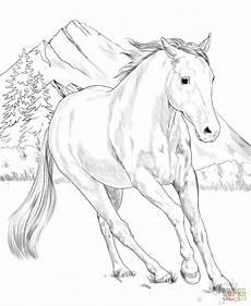 Ausmalbilder Pferde Haflinger American Paint Coloring Page Free Printable