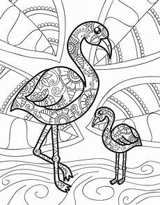 baby animal coloring pages for adults 17290 zendoodle coloring baby animals jeanette wummel macmillan
