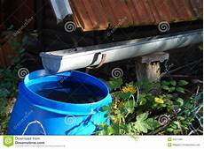 Collecting Rainwater For Watering The Garden Royalty Free