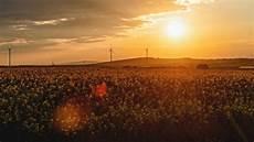 Prognose Sommer 2019 - affenhitze oder hei 223 e luft die sommer prognose auf dem