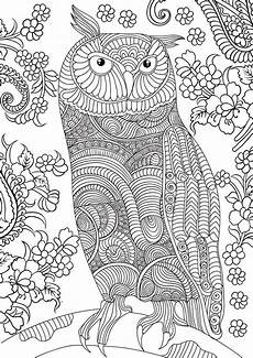 printable coloring pages for adults animals 17282 free book today and tomorrow 9th 10th for anyone who doesn t our owl coloring book yet
