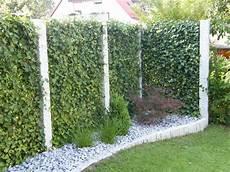 Garten Bronder Ihr Garten Und Landschaftsbau Vom
