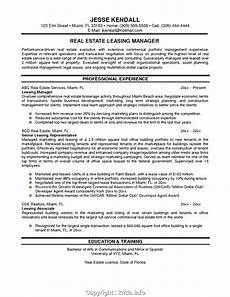 styles resume for real estate marketing manager resume