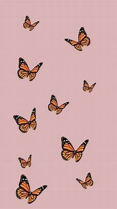 Orange Butterfly Wallpaper Vsco vsco butterfly aesthetic cover wallpapers wallpaper cave