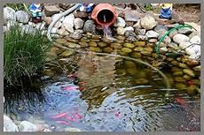 Aux Jardins D Am 233 Lie Le Bassin Aux Poissons L Endroit