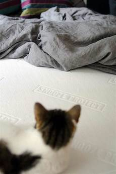 snooze project test snooze project matratze snooze project die ehrliche matratze einzigartig snooze project