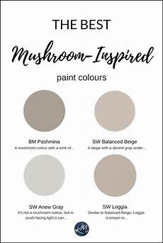the 5 best mushroom inspired paint colours benjamin and sherwin colour consultant greige