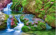 Nature Wallpaper Waterfall
