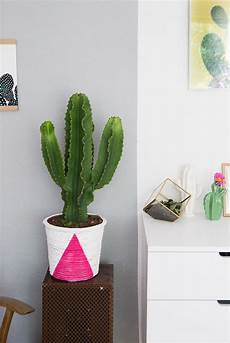 24 inspirierend pflanzen deko kreativ und selbstgemacht