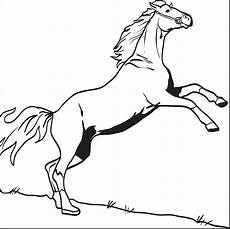bucking coloring pages at getcolorings free
