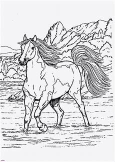 pferde malvorlagen fur erwachsene malvorlagen f 252 r kinder