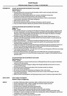 sle cv of business development manager business