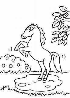 kostenlose malvorlage pferde pferd b 228 umt sich auf zum