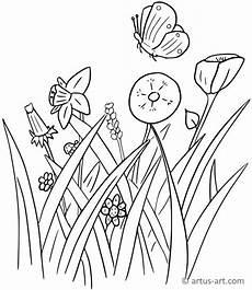 Ausmalbild Schmetterling Wiese Ausmalbild Blumenwiese Kostenlos Kinder Ausmalbilder