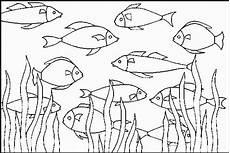 Malvorlagen Fische Malvorlagen Fische