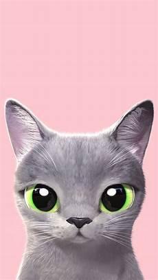 Wallpaper Cat For Phone Hd Ely Setiawan