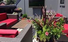 Quelles Plantes Choisir Pour Un Balcon Expos 233 Au Sud
