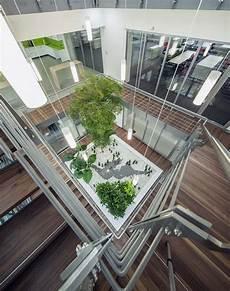 Innenraumbegr 252 Nung Bayern Pflanzen Baum Im Raum Kaufen
