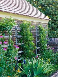 small garden ideas better homes gardens