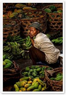 lombok villas parkmerced farmers market 1000 images about street markets in the world march 233 s