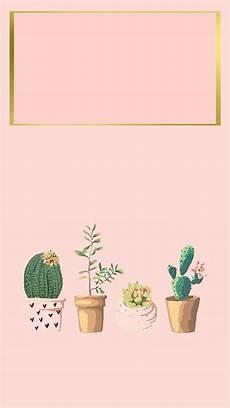 cactus flower iphone wallpaper iphone wallpaper iphone background succulent cactus