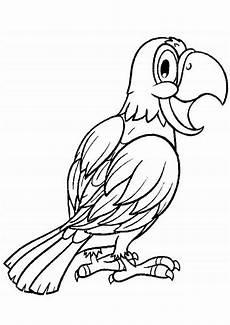 Ausmalbilder Tiere Papagei Ausmalbilder Papagei 27 Ausmalbilder Tiere