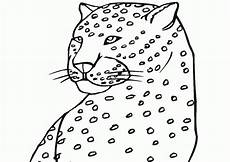 Kostenlose Malvorlage Gepard Gepard Ausmalbilder Malvorlagen 100 Kostenlos