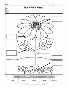 plant parts worksheets for kindergarten 13676 95 best venotha images on language classroom and lessons
