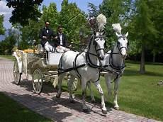 carrozza matrimonio carrozza con cavalli fiani autonoleggio l auto tuo