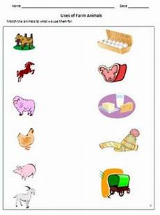 useful animals worksheets 14070 animals birds and insects worksheets for grade 1 2 kindergarten