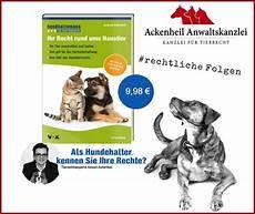 Tiere In Der Wohnung Tierrecht Tieranwalt