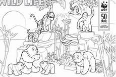 Bilder Zum Ausmalen Zoo Ausmalbilder Dschungel Kostenlos Malvorlagen Zum