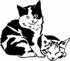 das beste malvorlage katze umriss top kostenlos