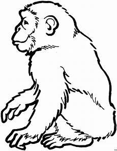 Malvorlagen Tiere Affen Gluecklicher Affe Sitzend Ausmalbild Malvorlage Tiere