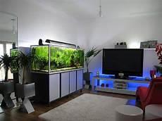 Aquarium In Wand Integrieren Modern Freshwater Aquarium Design Image Photos Pictures