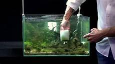 oliver knott scheibenreinigung aquascaping wiki aquasabi