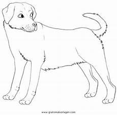 Hunde Ausmalbilder Labrador Labrador 3 Gratis Malvorlage In Hunde Tiere Ausmalen
