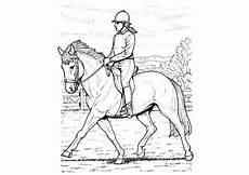 Malvorlagen Pferd Mit Reiterin Ausdrucken Ausmalbilder Pferde Mit Reiterin Kinder