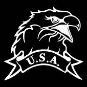 USA American Patriotic Eagle Car Truck Window Wall Laptop